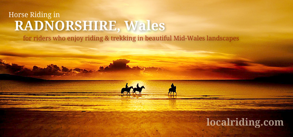 Trekking & Horse riding in Radnorshire, Wales