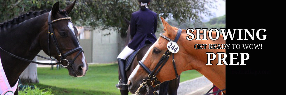 Horse Show Preparation & Livery Services