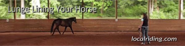 Horse Training - Lunge Lining Your Horse