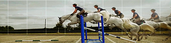 Horse training tips - Show jump schooling