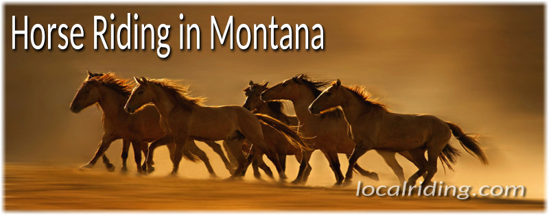 Horseback Riding in Montana USA