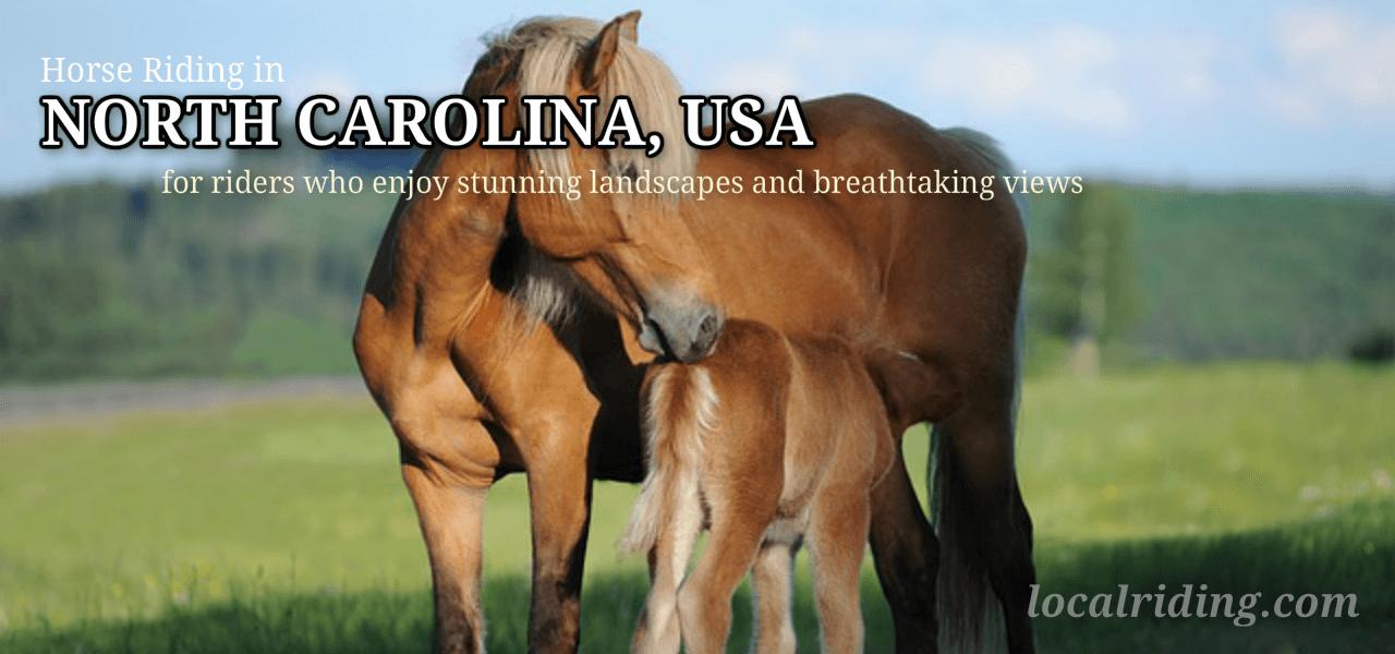 Horseback riding North Carolina, USA