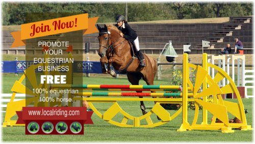 Join Now - Showjumping Equestrian Community
