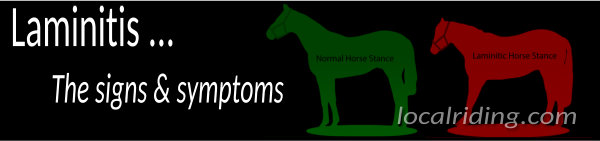 Equine Laminitis Signs & Symptoms
