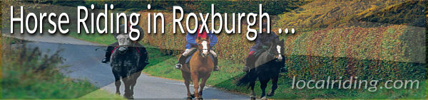 Horse Riding- n Roxburgh, Scotland