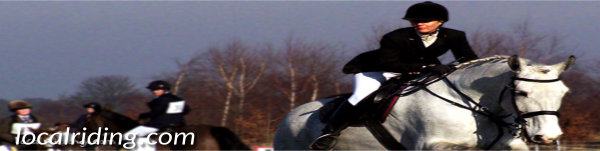 Showjumping competitions