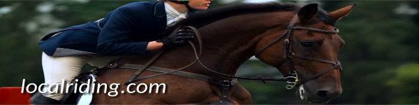 Show jumping - a popular equestrian sport