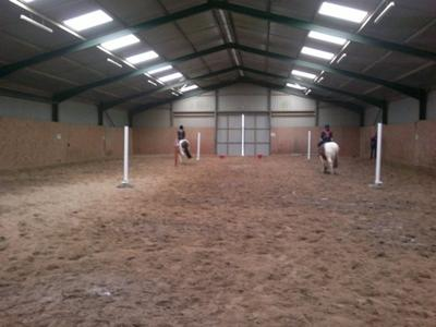 Schooling horses at Cressing Park Livery Yard