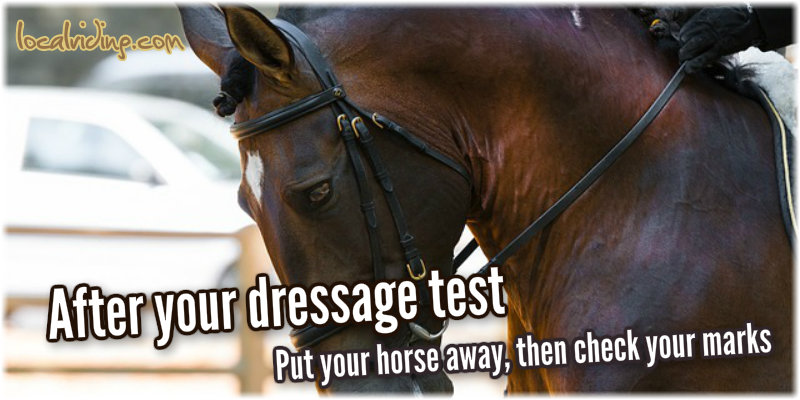Check Your Dressage Test Marks
