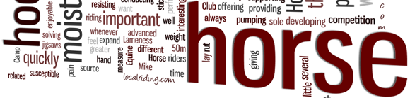 Equestrian Glossary - Horse Terms & Meanings