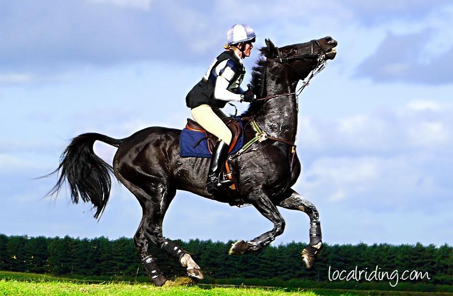 Resistant Horse Osberton Horse Trials