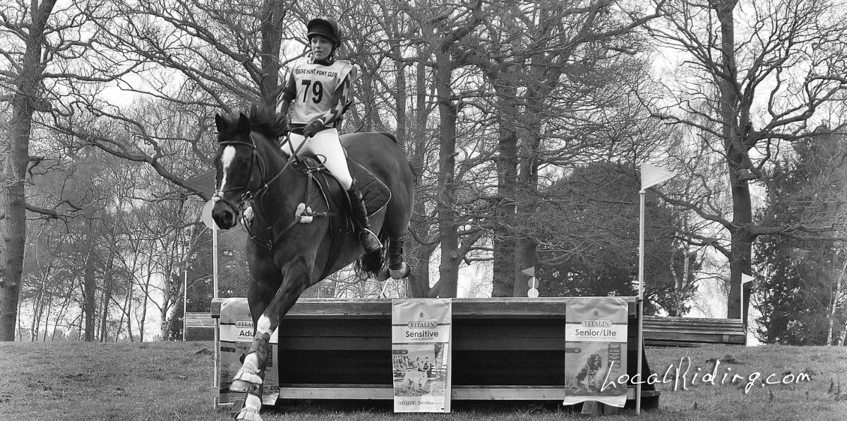 Thoroughbred Jumping cross country