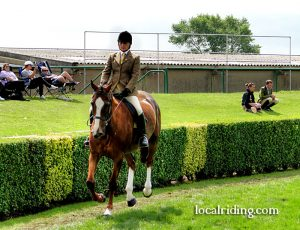 Showing Classes at Yorkshire Showground
